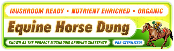New Horse Dung Product